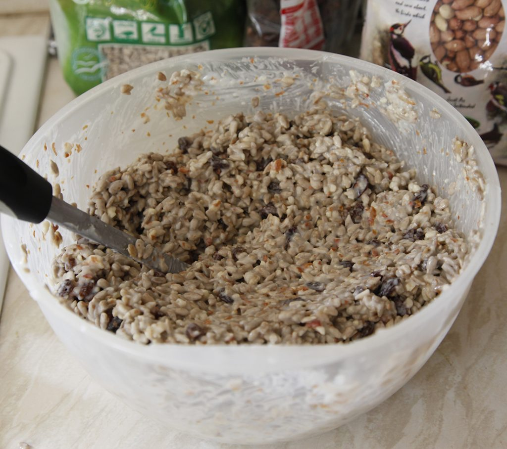 Make Your Own Bird Seed Cake